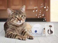 Cat DoorBell Image