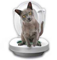 Litter Kwitter - Lær katten å bruke toalettet Image