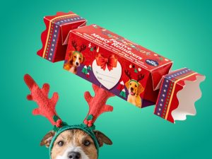 Cupid & Comet Christmas Cracker til hund Image